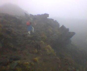 Vulkan auf der Nordinsel Neuseelands